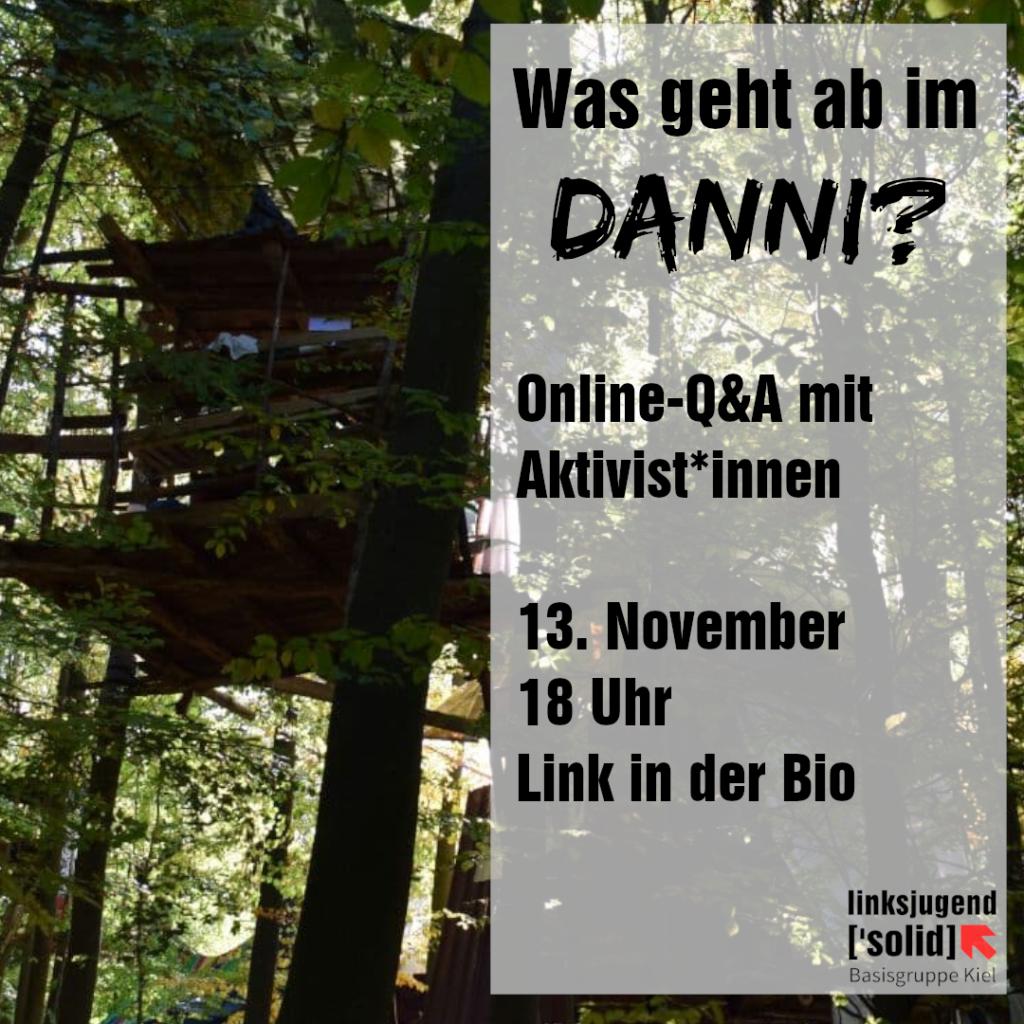 Bild eines Baumhauses - Online Q&A mit Aktivisti aus dem Danni